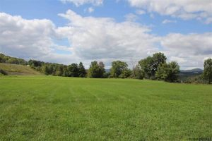 COBLESKILL: 8.8 ACRES WITH ACCESS TO ALL MAJOR ROADS, EXIT 22 ON I-88 photo