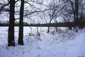SHARON: TWO SEPARATE PARCELS WITH A TOTAL OF 24 ACRES photo