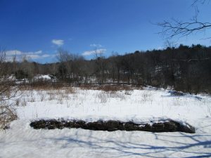 WESTFORD: 8.3 ACRES, PRIME BUILDING SITE IN AREA OF NICE HOMES, MINUTES TO COOPERSTOWN photo