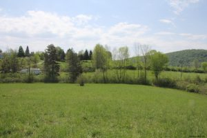 COBLESKILL: EXCELLENT BUILDING LOT ON 2.66 ACRES CONVENIENTLY LOCATED, PEACEFUL COUNTRY SETTING photo