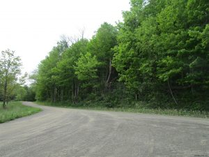 CHERRY VALLEY: VERY NICE RECREATIONAL LAND, 3 SIDE BY SIDE PARCELS – 10, 12.39, 12.91 ACRES TOTAL photo