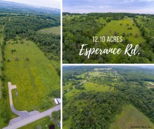 ESPERANCE: BEAUTIFUL 12 ACRE LOT, GREAT SPOT TO OWN LAND IN THE COUNTRY; FONDA-FULTONVILLE CSD photo
