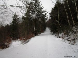 RICHMONDVILLE: 7.9 ACRES, MINUTES TO TOWN, MOSTLY WOODED, GENTLE SLOPES, GREAT CAMPING/BUILDING SITE photo