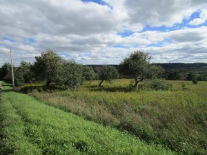 HERKIMER COUNTY: NICE BUILDING LOT, 7.9 ACRES, IN AREA OF QUALITY HOMES , LAND IS LEVEL TO ROLLING photo